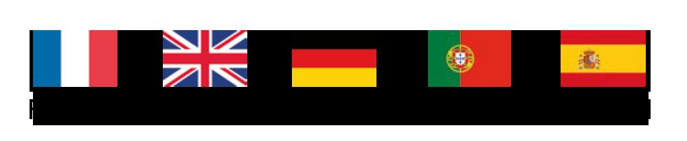 Drapeaux 5 langues